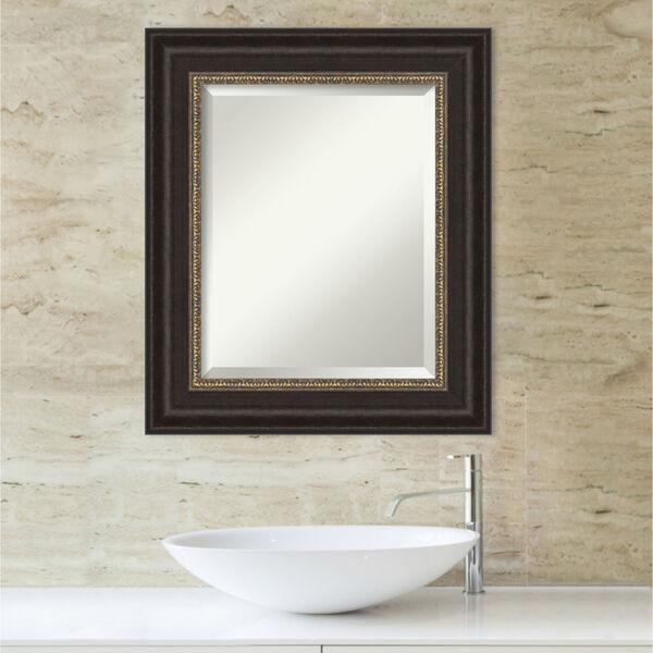 Paragon Bronze 23W X 27H-Inch Bathroom Vanity Wall Mirror, image 5