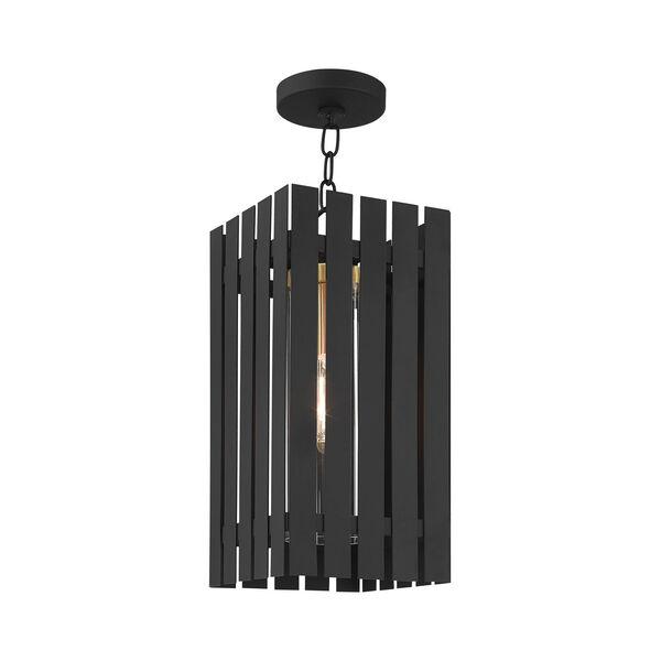 Greenwich Black and Satin Brass One-Light Outdoor Pendant Lantern, image 4