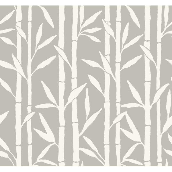 Antonina Vella Elegant Earth Gray Bamboo Grove Botanical Wallpaper, image 2