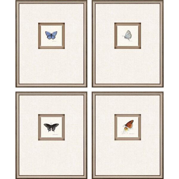 Butterfly Study I Multicolor Framed Art, Set of Four, image 2