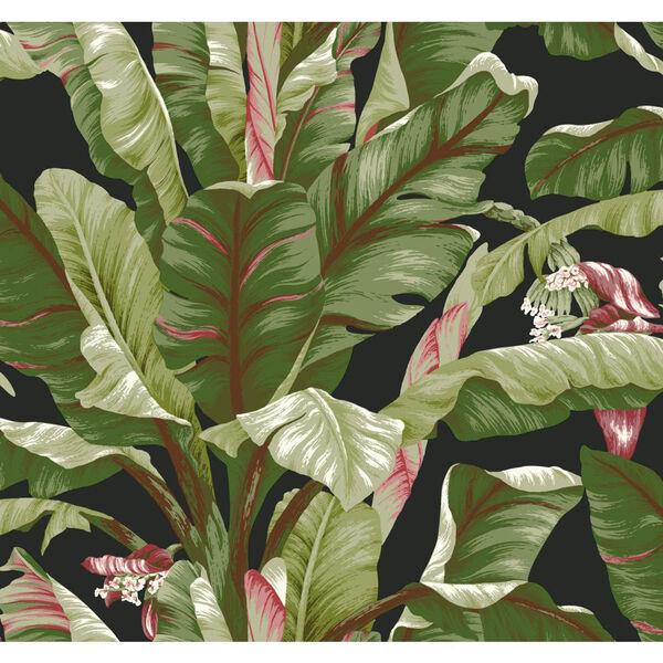 Ashford House Tropics Black and Green Banana Leaf Wallpaper, image 1