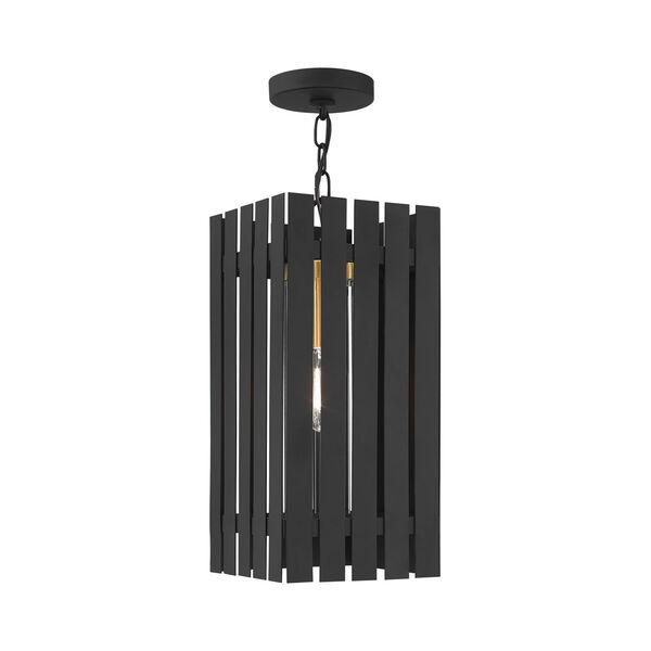 Greenwich Black and Satin Brass One-Light Outdoor Pendant Lantern, image 6