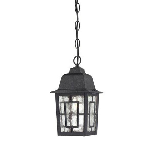 Banyon Textured Black Finish One Light Outdoor Hanging Pendant with Clear Water Glass, image 1