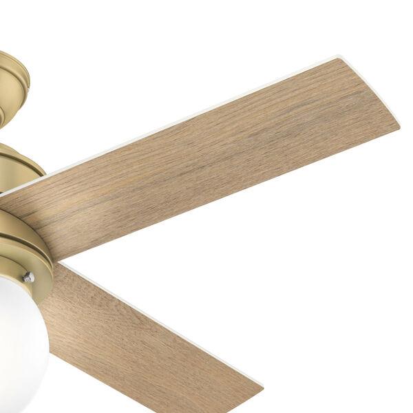 Hepburn Modern Brass 44-Inch LED Ceiling Fan, image 5