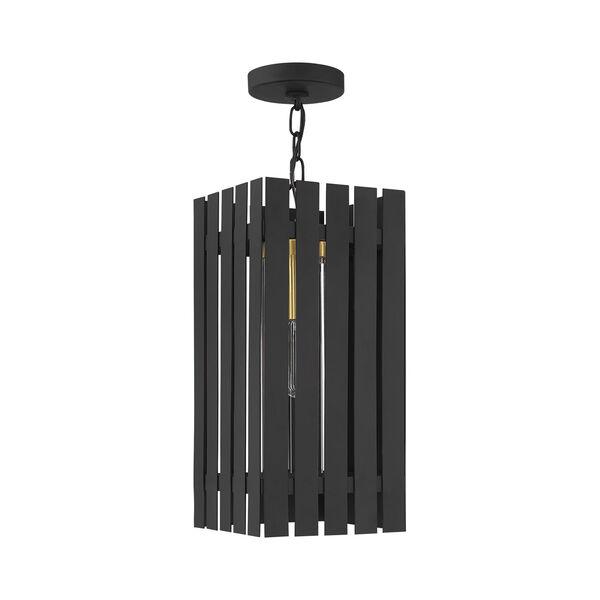 Greenwich Black and Satin Brass One-Light Outdoor Pendant Lantern, image 2