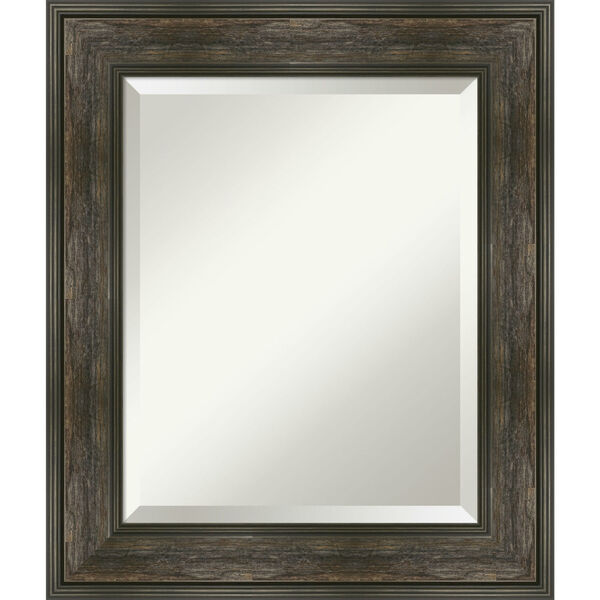 Rail Brown 22W X 26H-Inch Bathroom Vanity Wall Mirror, image 1