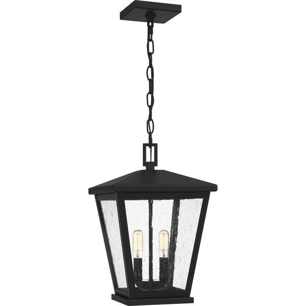 Joffrey Matte Black Two-Light Outdoor Pendant, image 1