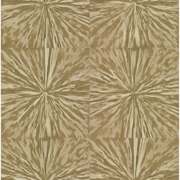 Antonina Vella Elegant Earth Gold Squareburst Geometric Wallpaper, image 2