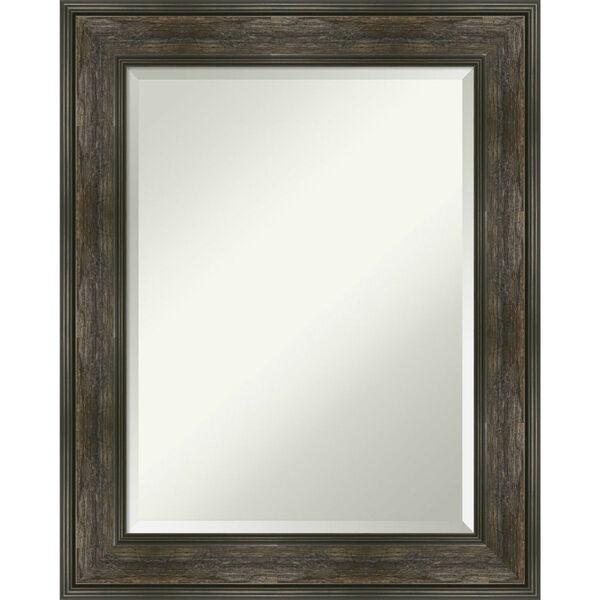 Rail Brown 24W X 30H-Inch Bathroom Vanity Wall Mirror, image 1
