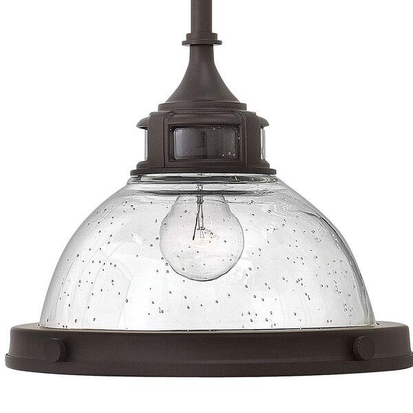 Amelia Buckeye Bronze One-Light Pendant with Clear Glass, image 2