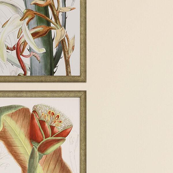Tropical Variety Orange Framed Art, Set of Four, image 3