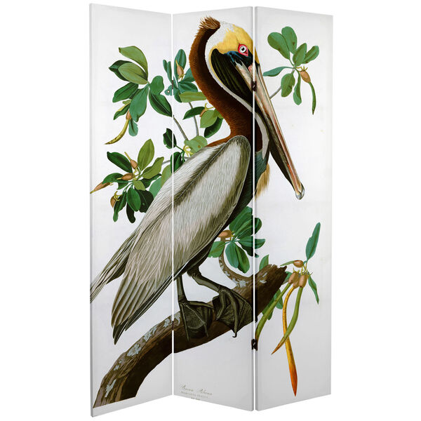 6-Foot Tall Double Sided Audubon Pelican Canvas Room Divider, image 2