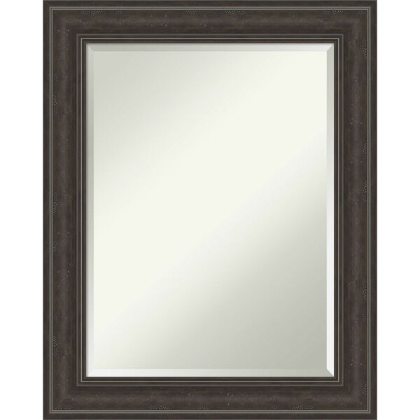 Shipwreck Gray 23W X 29H-Inch Bathroom Vanity Wall Mirror, image 1