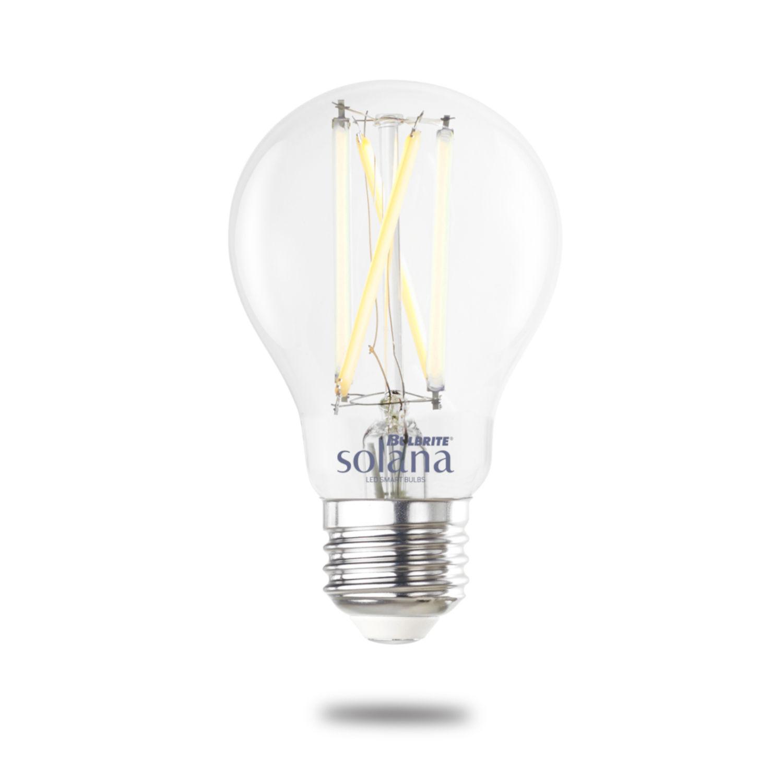 Type A Bulbs Category